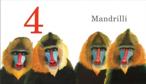 mandrilli